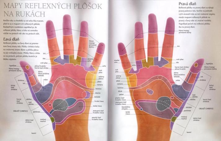 reflex-ruky