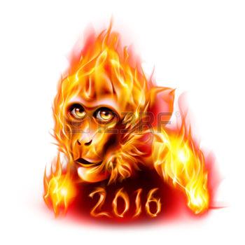 fire-monkey