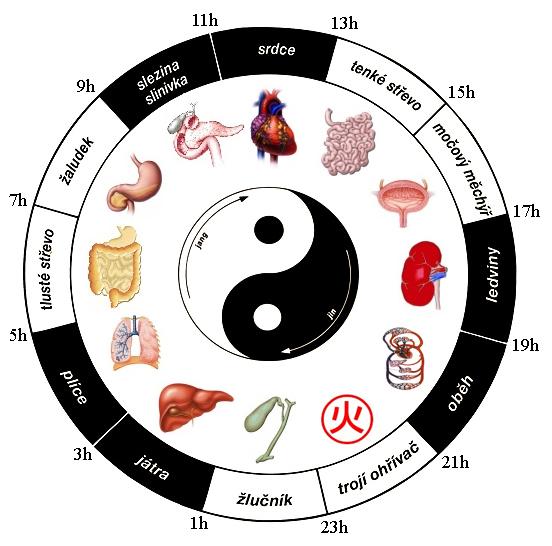 organove-hodiny